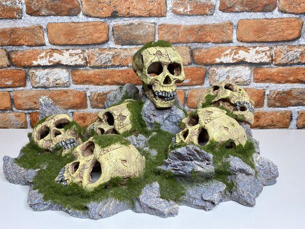 Duża ozdoba akwariowa - ludzkie czaszki z mchem