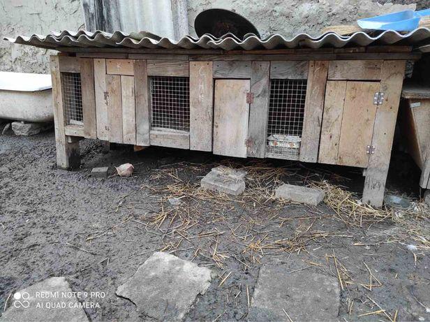 Продам клітки для кролів