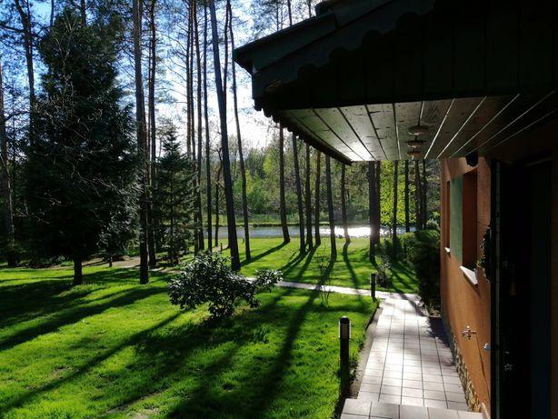 Domek w lesie, grill, kort, plaża, stawy niedaleko Warszawy