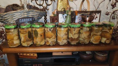 grzyby marynowane prawdziwki 370 ml