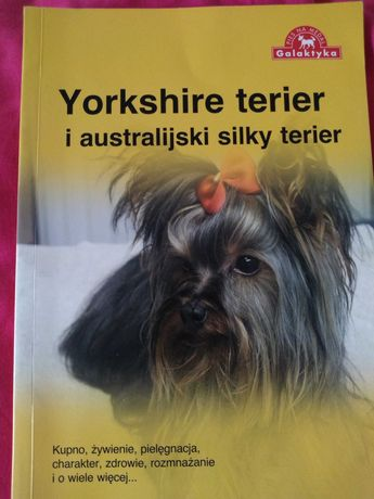 Yorkshire terier książka hodowcy, poradnik