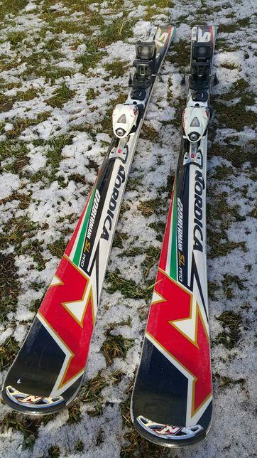 Nowoczesne Narty Slalomowe Doberman SL PRO długość 155 cm R: 11
