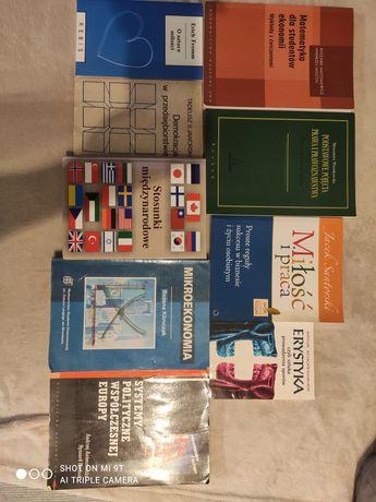 Książki akademickie stosunki międzynarodowe ekonomia europeistyka