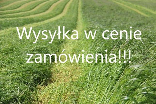 Nasiona kupkówka tymotka koniczyna kostrzewa lucerna Wysyłka GRATIS!