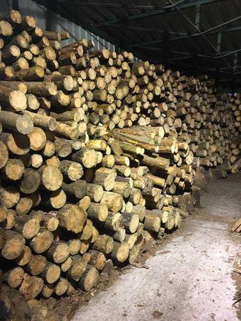 СОСНА дрова складені рубані колодки бревна колотые