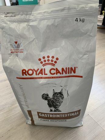 Raçao para gatos gastrointestinal