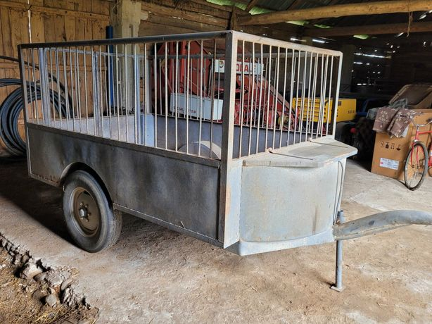 Przyczepa do przewozu zwierząt koni przyczepka