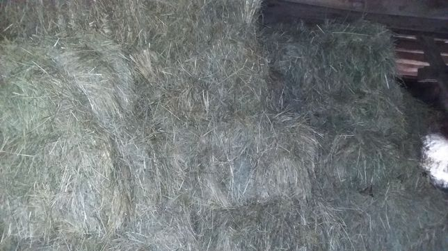 Siano Słoma kostka 10-12 kg