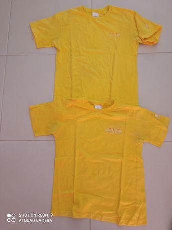 T-shirts escuteiros 12  anos