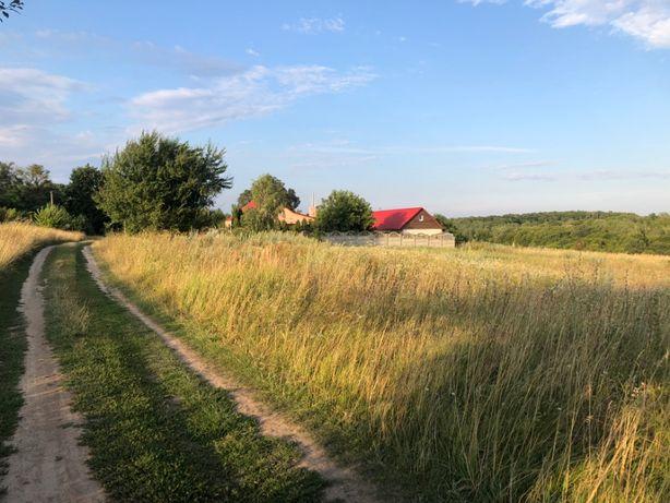 Продам 1.4 гектара землі 7 км. від Рівного. світло, газ поруч.