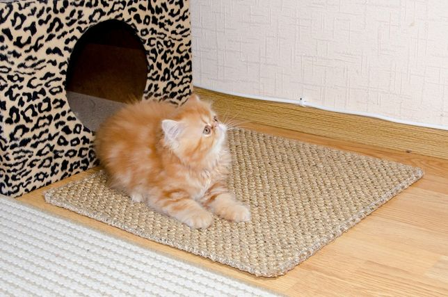 Когтеточка из сизаля. Коврик для котов.