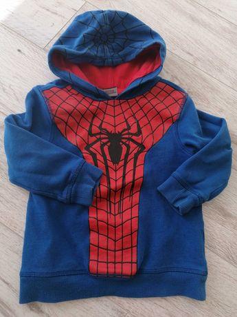 Bluza z kapturem Marvel Spider-Man 98 104