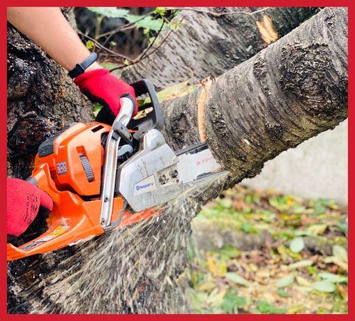 Wycinka drzew, krzaków, podcinka drzew z podnośnika