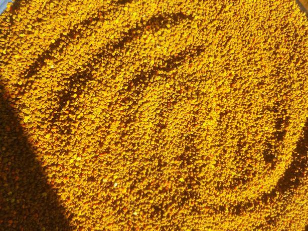 Пилок пыльца 2021