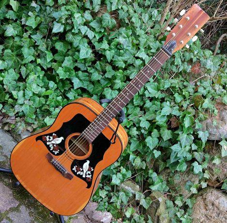 Gitara akustyczna K-550, Eko Ranger, Italy