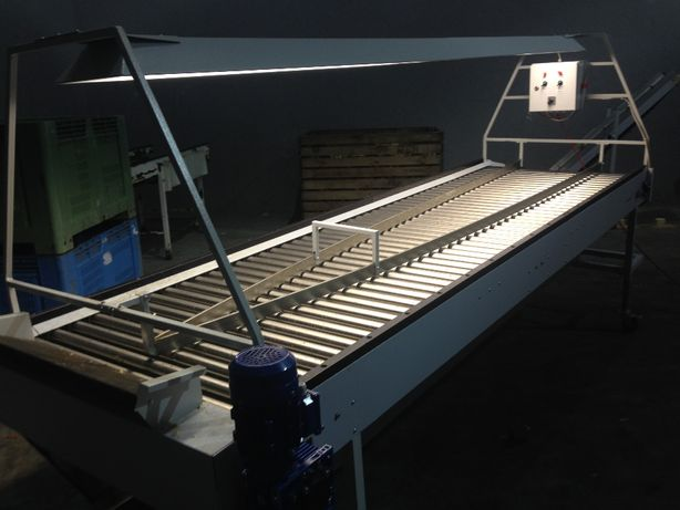 Stół przebierczy rolkowy do cebuli 3500 x 1000 taśmociągi na odpad
