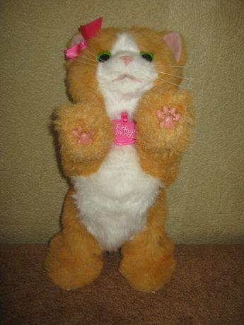 Интерактивный игривый котенок Дейзи Фуриал Френдс Furreal Friends Elec