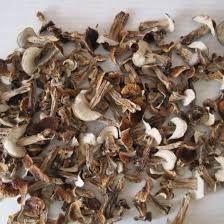 Белые сухие грибы 2021 урожай сушка в печке