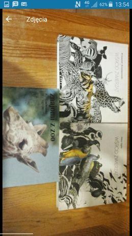 Zestaw książek o zwierzętach