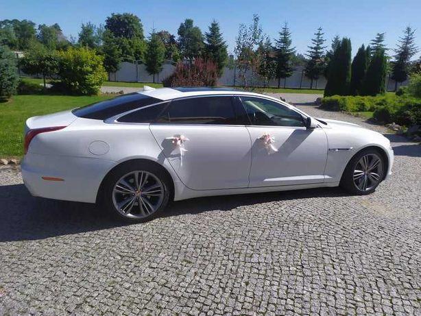 Auto Samochód do Ślubu Wesela 18-stki Jaguar XJL w longu Biały