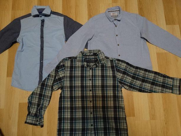koszule dla chłopca 11lat nr ogł 1528