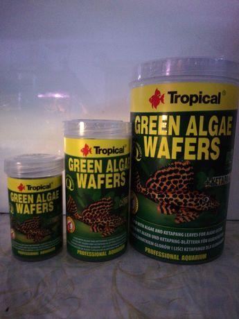 Green algae wafers - sklep SKALAR