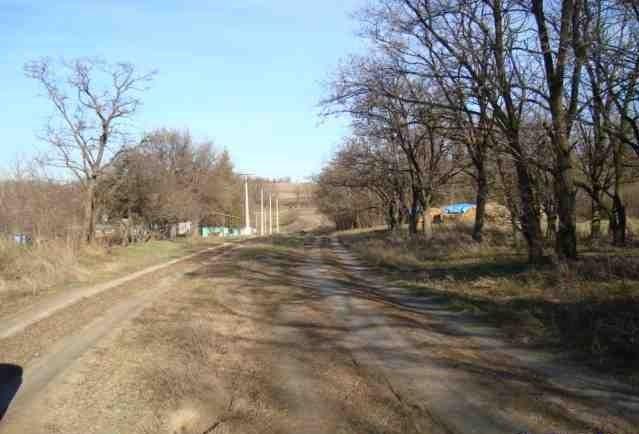 Земельный участок в с. Звонецкий Хутор