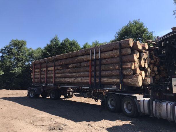 Drewno Tartaczne Swierk
