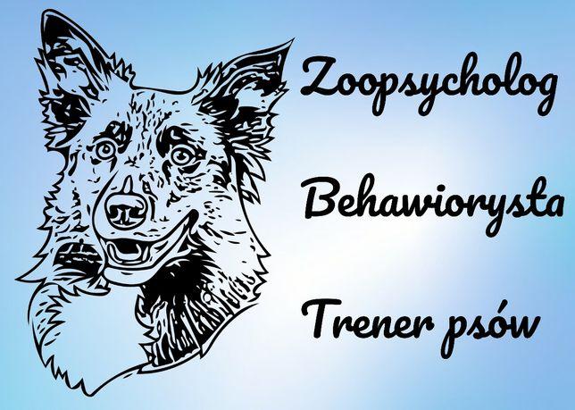 Zoopsycholog Behawiorysta Szkolenie psów