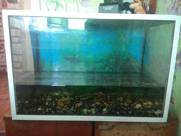 Продам или обменяю каркасный аквариум 180 литров