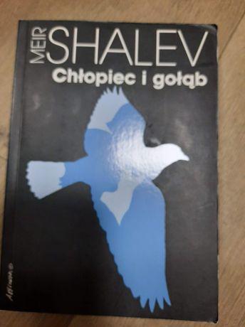 Shalev Chłopiec i gołąb