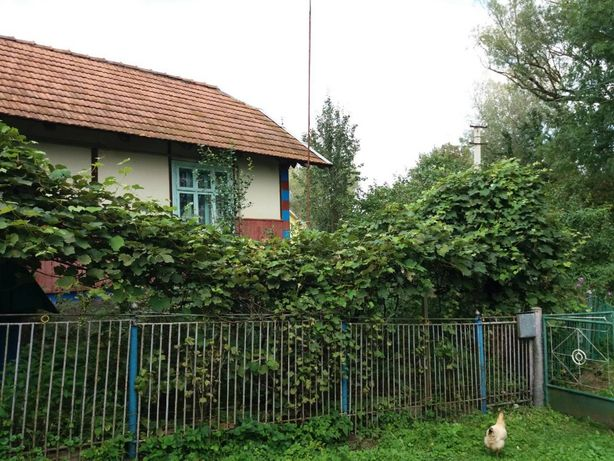 Будинок с.Летня