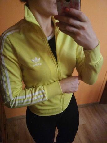 Bluza Adidas rozmiar 36