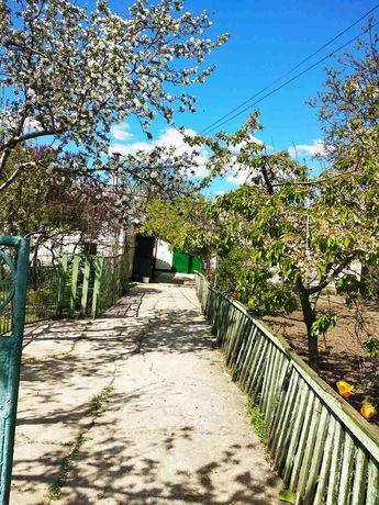 Продам дом в Славгороде