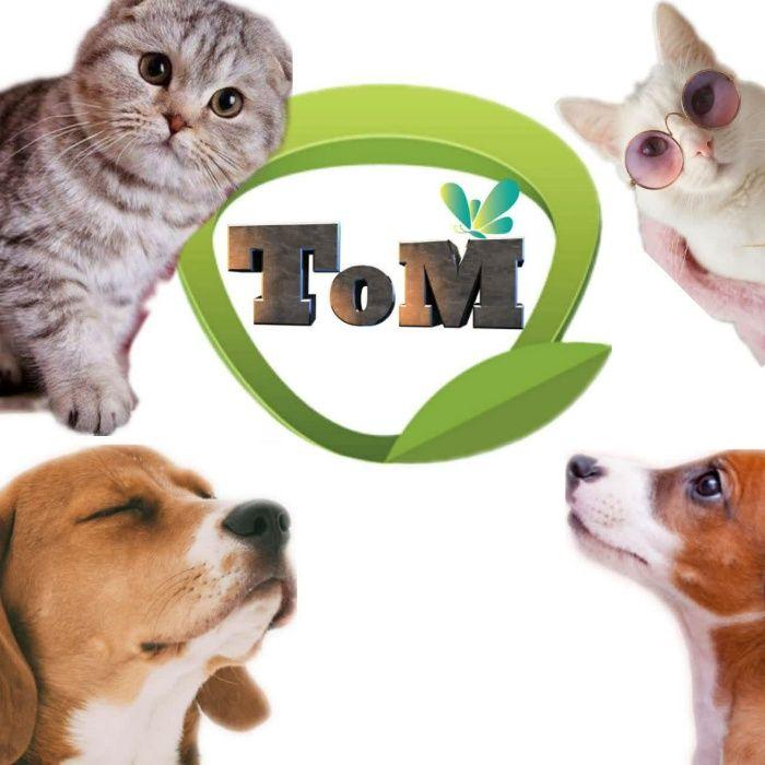 Сухий корм для собак та котів Аналог мяу, просто корм, гав , роял кані Хмельницкий - изображение 1
