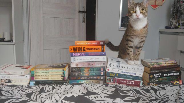 Książki wymienię lub sprzedam Percy Jackson, Pierwszy Śnieg, inne