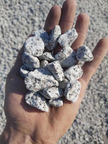 GRYS DO OGRODU Granitowy Dalmatyńczyk 16-22 kamień ozdobny granit