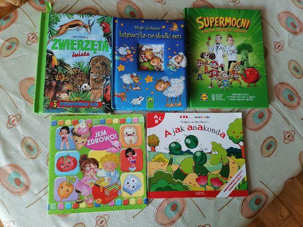 Zestaw trzech książek dla dziecka na długie siedzenie w domu
