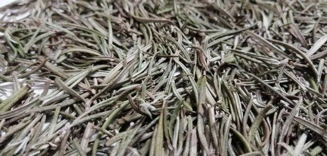 Alecrim - folhas