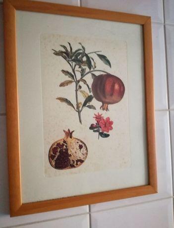 Dois quadros decorativos cozinha