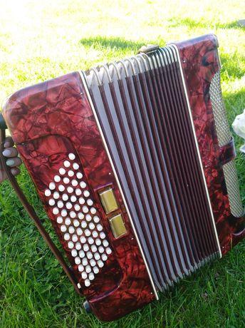 Akordeon rhythmus
