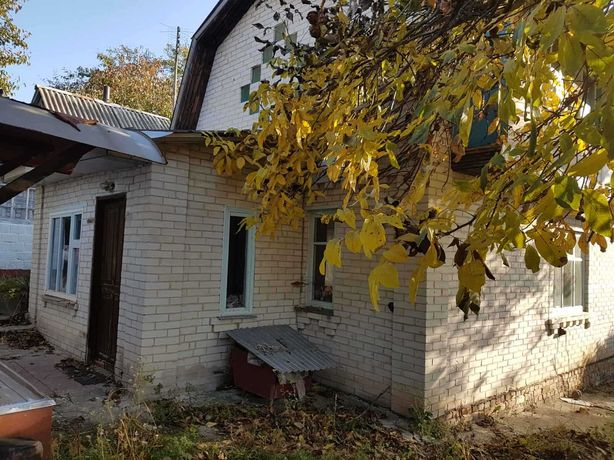 Ромашки в Мироновском районе 120 км. от Киева