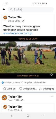 Szkolenie psów, przygotowanie do testow, plac szkoleniowy Stara Obra.