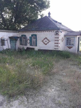 Предлагаю купить дом-дачу в Васищево