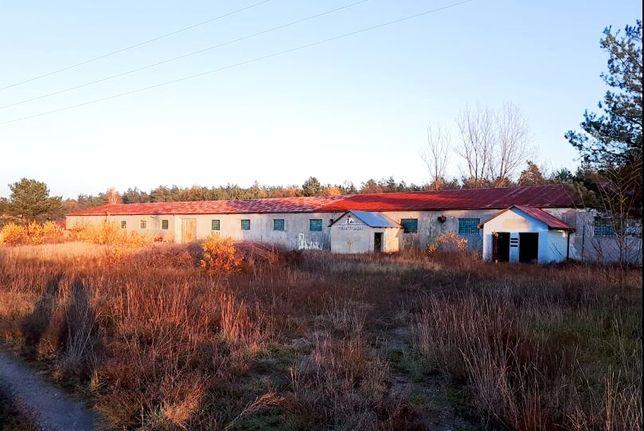 Budynek przemysłowy, hala 1520m2, działka 1ha pow. łukowski