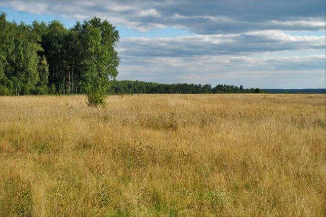 Продам участок Вышгородский р.н с.Круги 0.25г