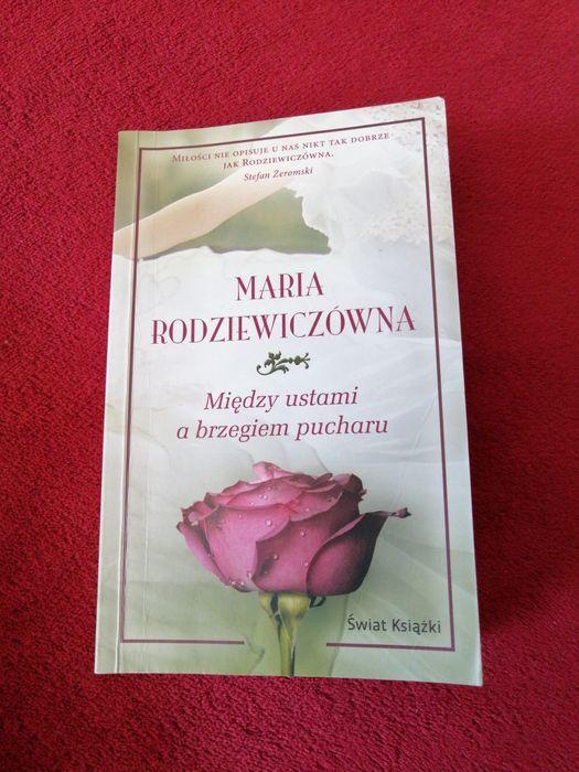 Między ustami a brzegiem pucharu - Maria Rodziewiczówna Kraków - image 1