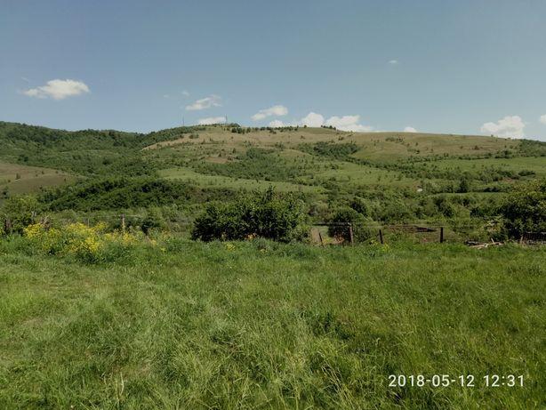 Продаєця земельна ділянка в селі Новий Кропивник