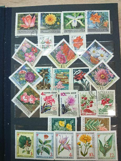 Альбом марок на тему флора.
