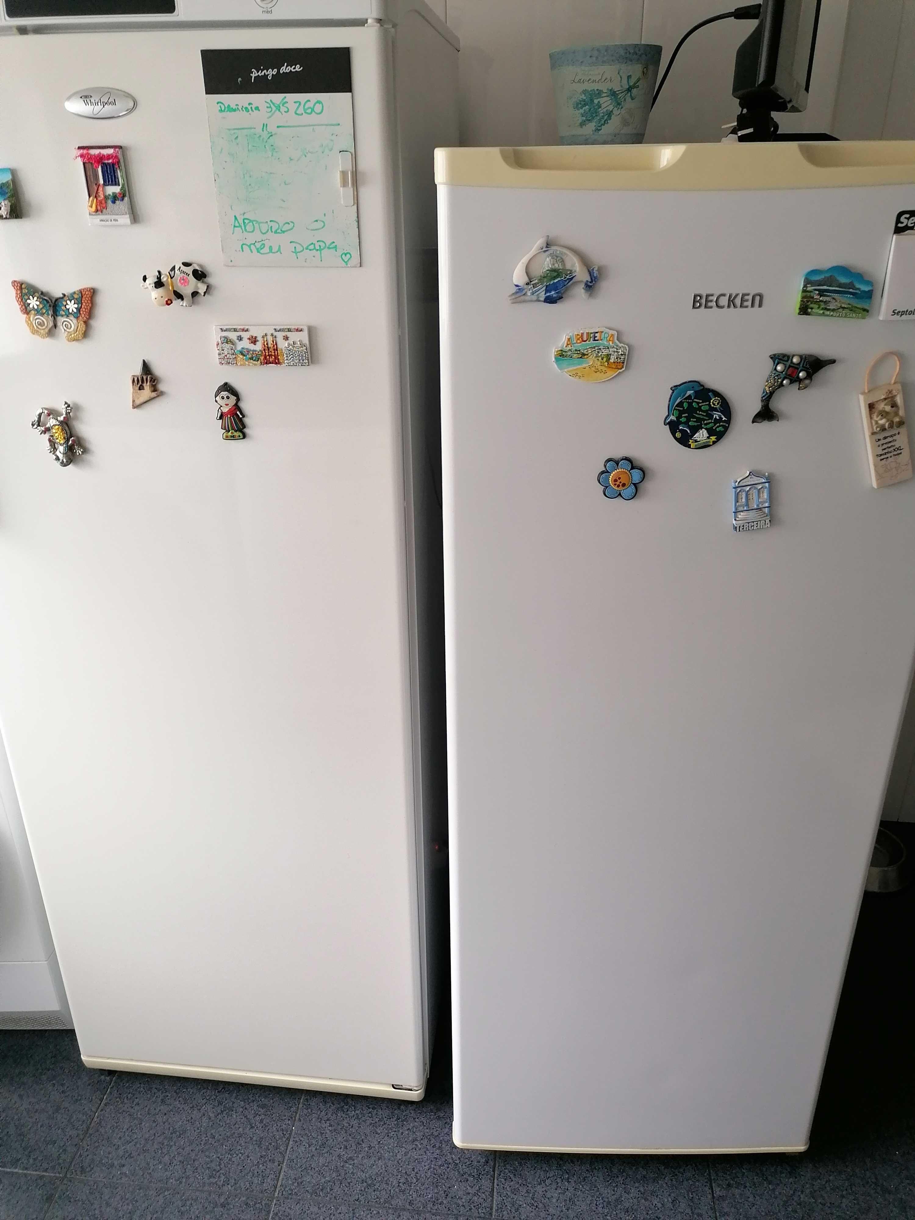 Conjunto frigorífico e arca vertical